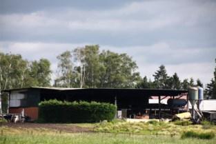 Brand verwoest schuur met landbouwmachines in Gerdingen