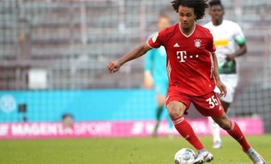 Bayern München-aanvaller Joshua Zirkzee op weg naar Anderlecht, paars-wit doet ook een bod op Yuma Suzuki (STVV)