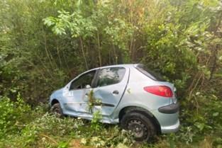 Auto belandt in berm langs E314 in Genk