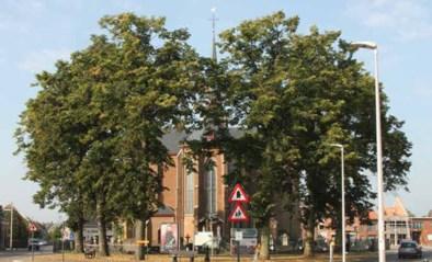 Bomenplan voor meer bomen in bebouwde omgeving