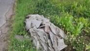 """Onbekende dumpt aanhangwagen vol asbestplaten in graskant: """"Flagrante overtreding"""""""