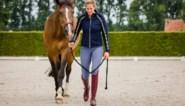 """Dressuuramazone en ex-Olympiër Jorinde Verwimp (26) leeft voor haar paarden: """"Je kunt hen niet even aan de kant schuiven"""""""