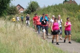Ibis leidt wandelaars drie dagen door Klein-Brabant