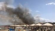 Toeristen en inwoners geëvacueerd uit Italiaanse Pescara wegens bosbranden: minstens 5 gewonden