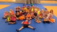 Honderd kinderen bouwen kampen en maken eigen ballenbad tijdens avonturenkamp