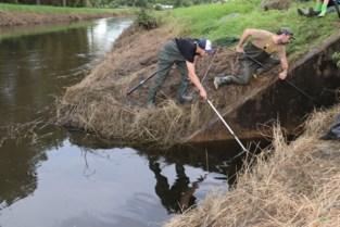 """Hengelaars al dagenlang in de weer om vissen te redden uit zuurstofarm water: """"Deze overstroming was dramatisch"""""""