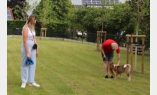"""Drie gemeenten starten samen dierenvoedselbank: """"Zo kunnen mensen in armoede hun huisdier behouden"""""""