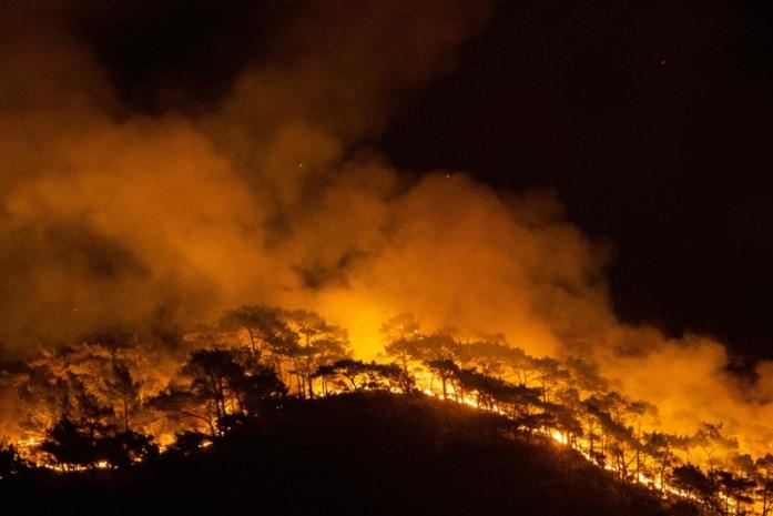 Hevige bosbranden Turkije en Italië lang niet allemaal gevolg van klimaatverandering: groot deel werd aangestoken