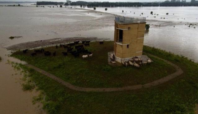 Natuurverenigingen blijven achter met financiële kater na wateroverlast