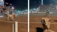 Publiek wordt onaangenaam verrast tijdens rodeoshow