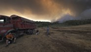De hemel kleurt zwart boven Zuid-Europa: vlammen naderen Turkse elektriciteitscentrale, ook Athene bedreigd