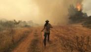 Nieuwe evacuaties voor bosbranden op Griekse eiland Evia