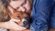 Rouwende vrouw krijgt twee weken ziekteverlof nadat hond sterft