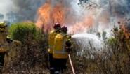 Brandweer bestrijdt twee bosbranden in zuidwesten van Frankrijk
