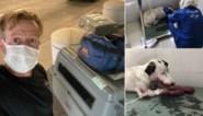 Britse ex-marinier evacueert dan toch 170 dieren uit Kaboel (maar moet medewerkers achterlaten)