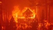 Duizenden op de vlucht voor bosbrand in Californië