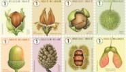 Bpost is al in herfstsfeer met nieuwe zegelreeks: noten en zaden in overvloed