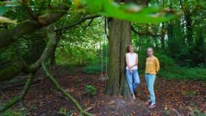 """Gentse universiteit wil 4.000 vierkante meter bos kappen voor studentenhome, buurt verzet zich: """"Er is al zo weinig groen"""""""