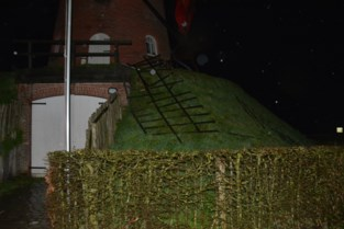 Meer dan 50.000 euro om wieken te repareren die storm Dennis kapot blies