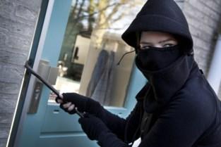 Politie houdt zoekactie naar inbrekers