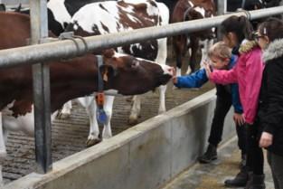 De Breykenshoeve en Den Akker zetten deuren open voor Dag van de Landbouw