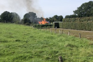 Brand vernielt houtopslag
