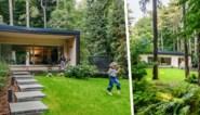Genieten van de rust, het groen en soms een hert in de tuin: binnenkijken in de seventiesvilla van Annelien en Tom