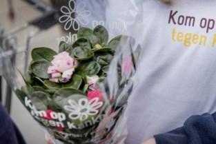 Vrijwilligers verkopen azalea's voor Kom op tegen Kanker