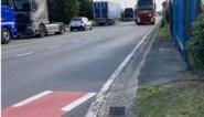 """Speciale Gentse fietsroutes 'voor lefgozers': """"Wie door haven rijdt, riskeert zijn leven"""""""