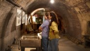 'Steenbakkerstunnels herontdekt' is Wandeling van het Jaar