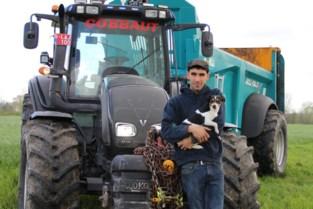 Nikolaasommegang wordt hommage aan Glen Cobbaut: jonge landbouwer verongelukte in juli op boerderij van zijn ouders