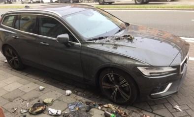"""Vandalen besmeuren auto's in Rooigemlaan: """"Pmd-zakken in brand gestoken"""""""