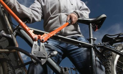 Dief steelt slotvaste fiets uit garage