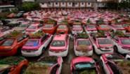 Ongebruikte taxi's worden moestuin voor werkloze chauffeurs