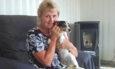 Ontvoerde hond Femke is weer thuis: