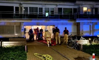 Brand woedt op terras van dakappartement in Mechelen