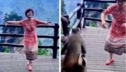 Vrouw geeft show voor fotocamera, maar het is aap die met de aandacht gaat lopen